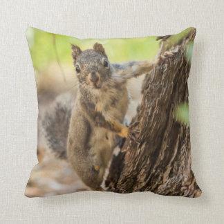 Eastern Sierra Nevada Throw Pillow