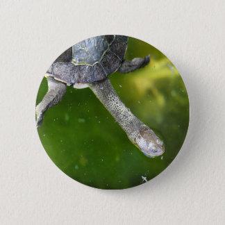 Eastern Snake-Necked Turtle 6 Cm Round Badge