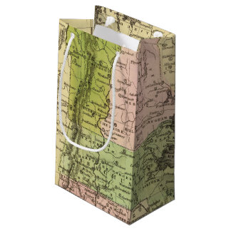 Eastern States Olney Map Small Gift Bag