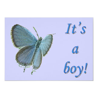 Eastern-Tailed Blue New Baby Boy Announcement
