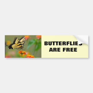 Eastern Tiger Swallowtail Butterfly Bumper Sticker