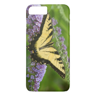 Eastern Tiger Swallowtail butterfly iPhone 8 Plus/7 Plus Case