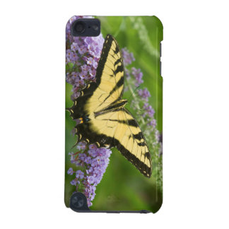 Eastern Tiger Swallowtail butterfly iPod Touch (5th Generation) Covers
