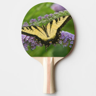 Eastern Tiger Swallowtail butterfly Ping Pong Paddle