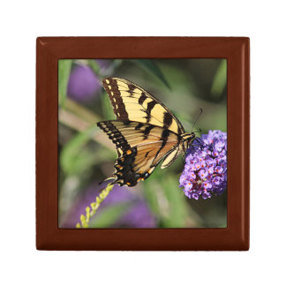 Eastern tiger swallowtail butterfly profile small square gift box