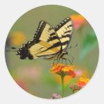Eastern Tiger Swallowtail Butterfly Round Sticker