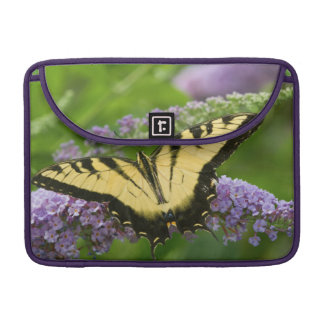 Eastern Tiger Swallowtail butterfly Sleeve For MacBook Pro