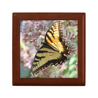 Eastern tiger swallowtail butterfly small square gift box