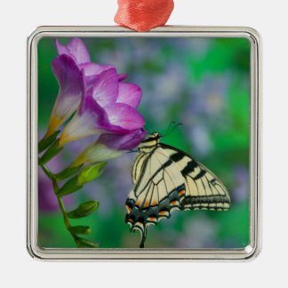 Eastern Tiger Swallowtail on Fresia - Sammamish Christmas Ornament