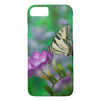 Eastern Tiger Swallowtail on Fresia - Sammamish iPhone 8/7 Case