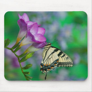 Eastern Tiger Swallowtail on Fresia - Sammamish Mouse Mat