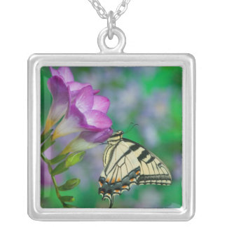 Eastern Tiger Swallowtail on Fresia - Sammamish Silver Plated Necklace