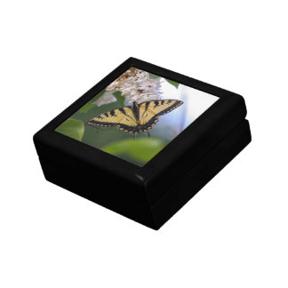 Eastern Tiger Swallowtail Small Square Gift Box