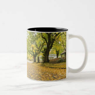 Eastmoreland In Autumn road and tree view Two-Tone Coffee Mug