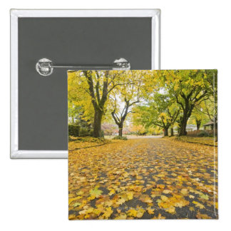Eastmoreland Neighborhood In Autumn 15 Cm Square Badge
