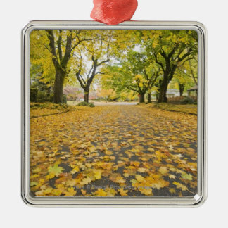 Eastmoreland Neighborhood In Autumn Christmas Ornament