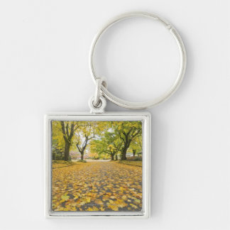 Eastmoreland Neighborhood In Autumn Key Ring