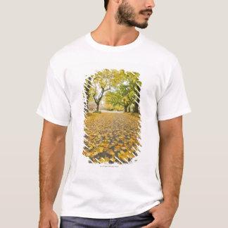 Eastmoreland Neighborhood In Autumn T-Shirt