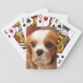 Easton, Pennsylvania, USA Playing Cards