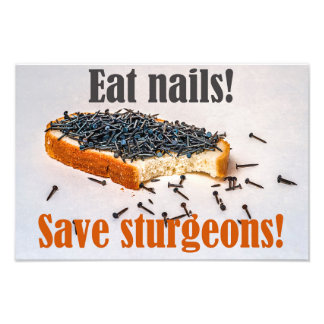 Eat Nails Save Sturgeons! Photo Print