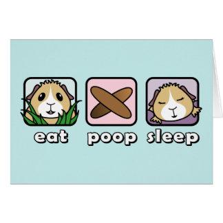 Eat Poop Sleep Guinea Pig Greetings Card