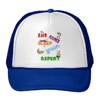 Eat, Pounce, Sleep, Groom, Repeat.. Hat