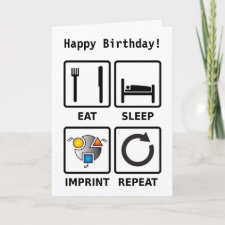 Eat, sleep, imprint, repeat greetings card