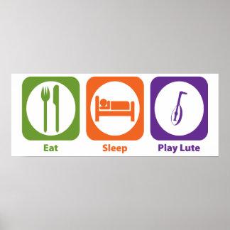 Eat Sleep Play Lute Poster