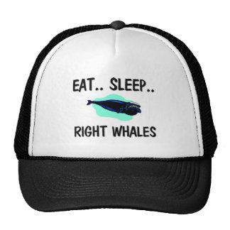 Eat Sleep RIGHT WHALES Cap