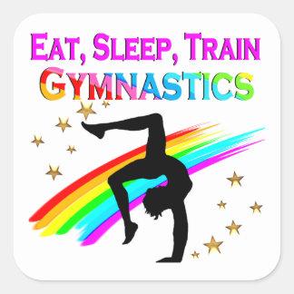 EAT, SLEEP, TRAIN CUSTOM GYMNASTICS STICKERS