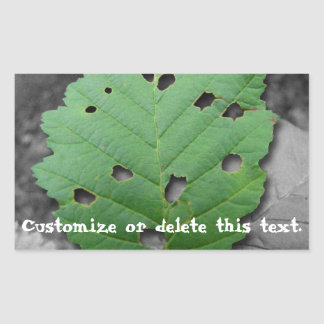 Eaten by Bugs; Customizable Rectangular Sticker