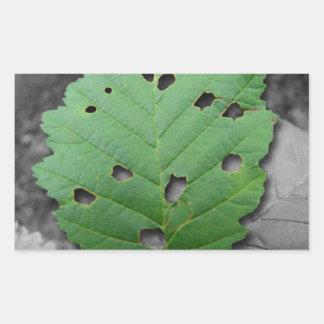 Eaten by Bugs; No Text Rectangular Sticker