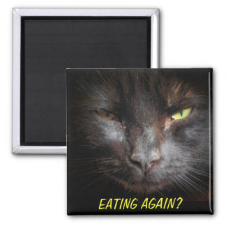 Eating Again? Mean Kitty refridgerator Square Magnet