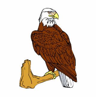 Ebb Eagle Standing Photo Sculpture