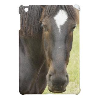 Ebony Case For The iPad Mini