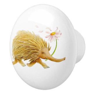 Echidna animal watercolor whimsy art knob
