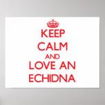 Echidna Poster