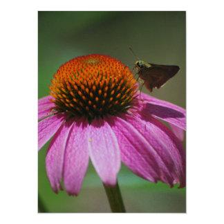 Echinacea 14 Cm X 19 Cm Invitation Card