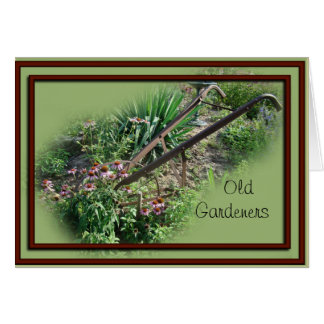 Echinacea Cultivator card-customize any occasion