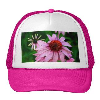 echinacea pink flower hat