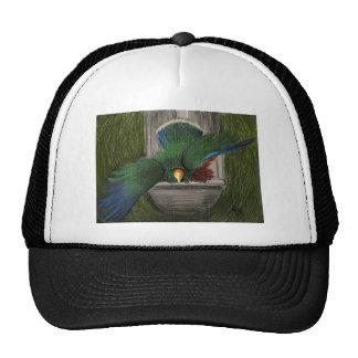 Eclectus Trucker Hat