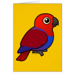 Eclectus Parrot female Note Card