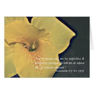 Eclesiastés 7 9 Carta Greeting Cards