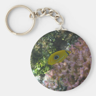 Eclipse Butterfly Fish Swimming By Coral Key Ring