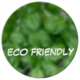 Eco friendly plate
