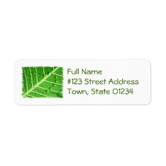 Eco Love Return Address Label