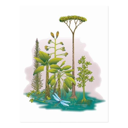 Ecology : plant a tree - postcard