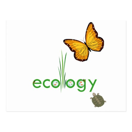 Ecology Post Card