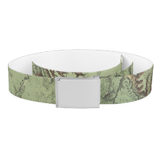 Economical Features of Colorado and New Mexico Belt