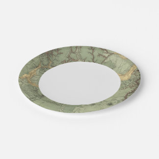 Economical Features of Colorado Paper Plate